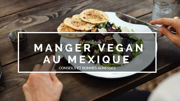 blog raton reveur manger vegan mexique resto vegan mexique cléa jordier