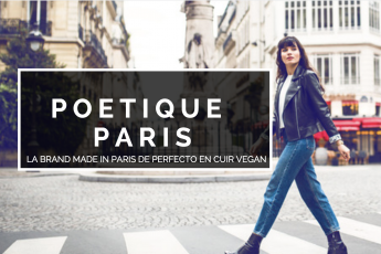 raton reveur blog perfecto cuir vegan poetique paris