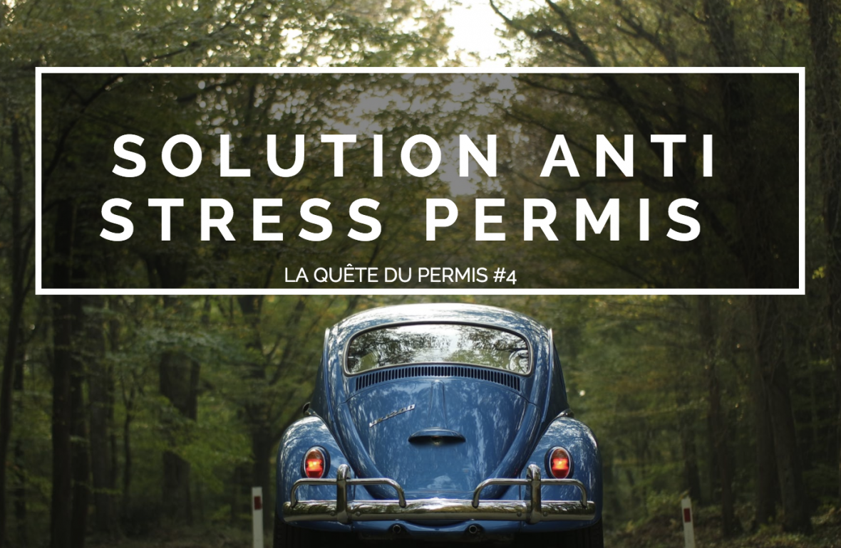 solution anti stress permis de conduire avis zen oto blog raton reveur
