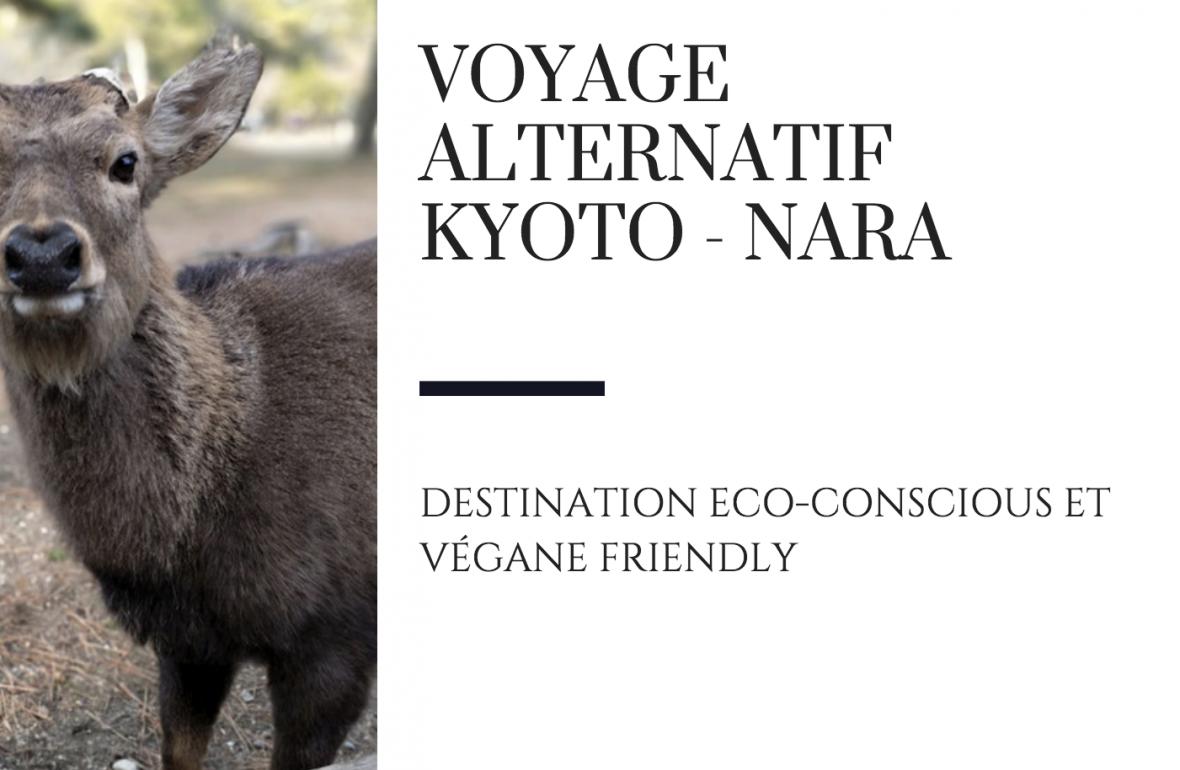 nara alternatif kyoto japon voyage raton reveur blog