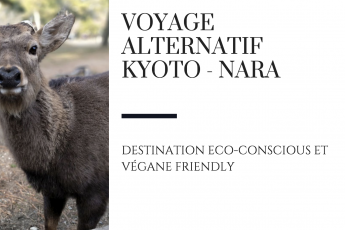 nara alternatif kyoto japon voyage raton reveur blog