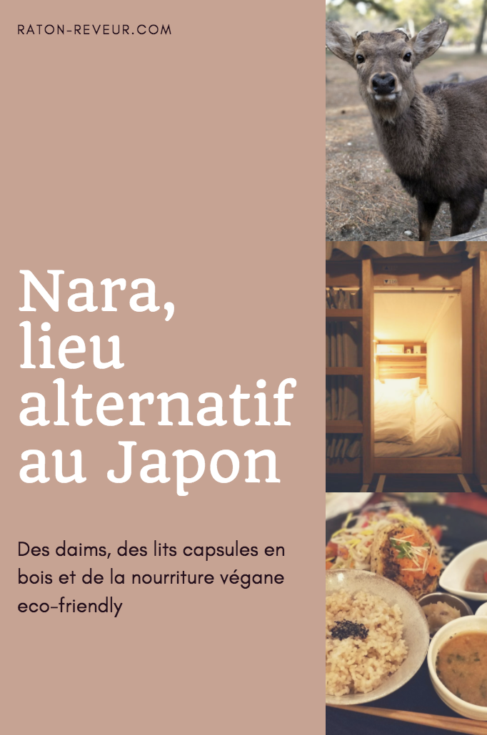 nara guide alternatif raton reveur blog
