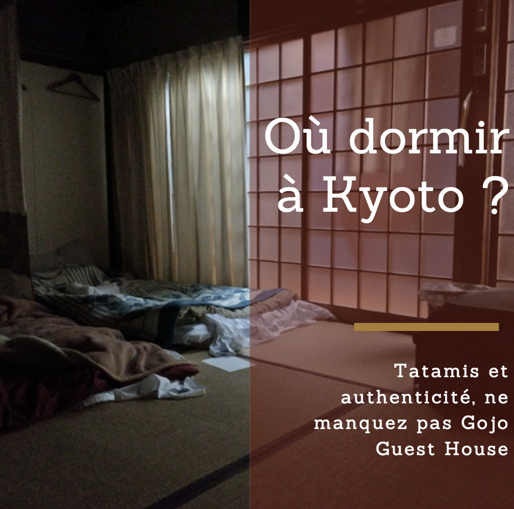 kyoto alternatif raton reveur guide