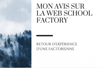 raton reveur blog avis web school factory
