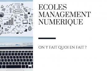 écoles management numerique raton reveur blog
