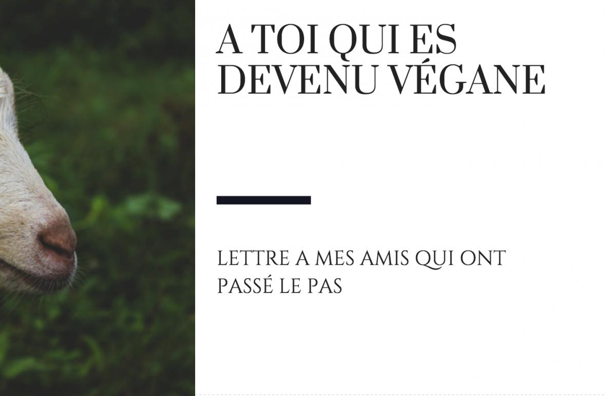 A toi qui est devenu vegane raton reveur blog devenir vegane