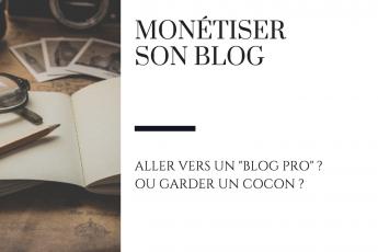 monétiser blog raton reveur
