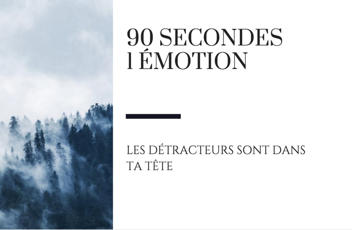 90 secondes. 1 émotion. Les detracteurs raton reveur blog