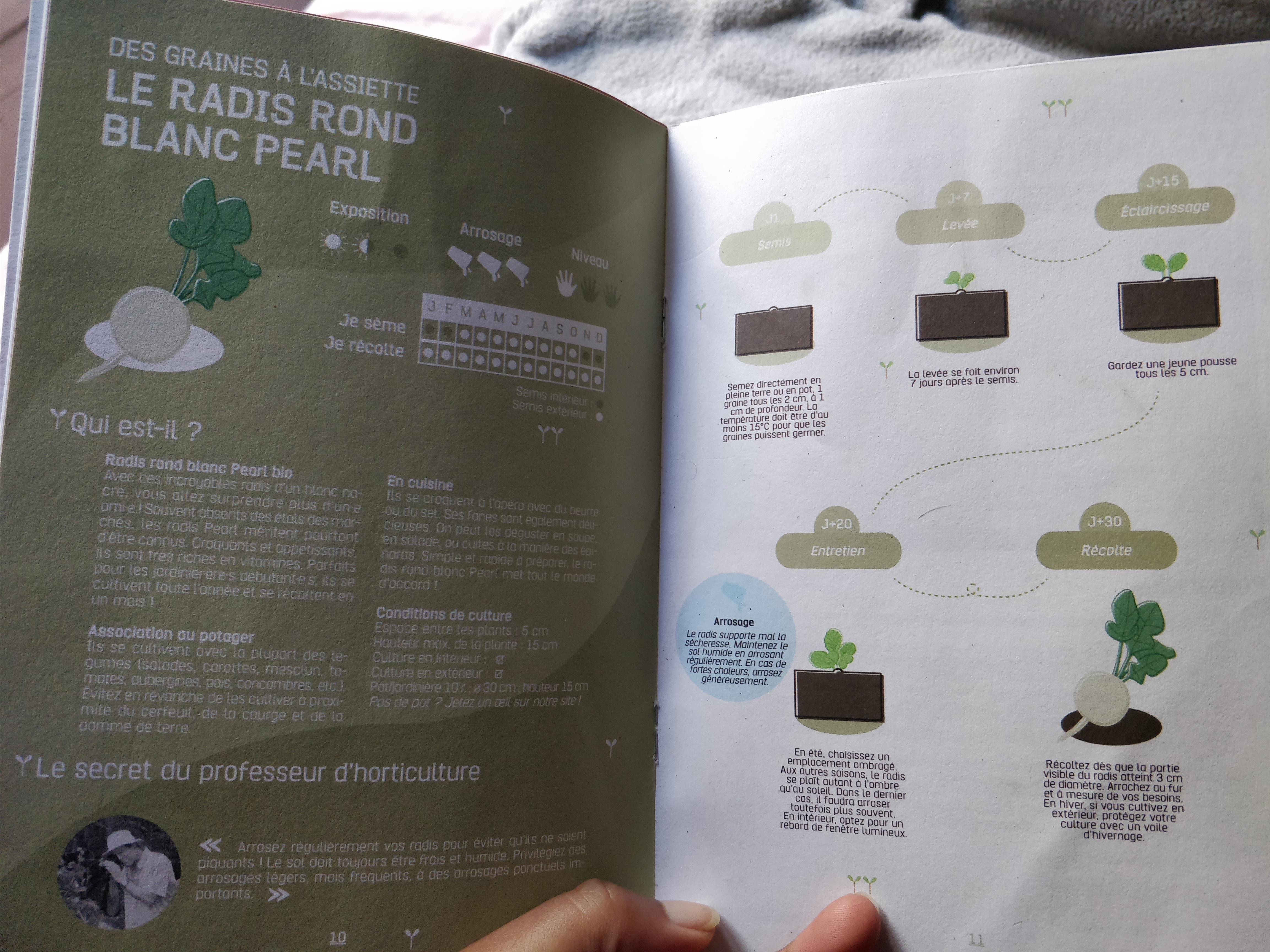avis mon petit coin vert raton reveur blog faire pousser légumes en appartement