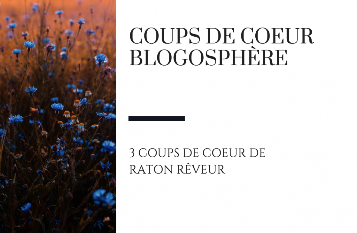 raton reveur blog coup de coeur blogosphère